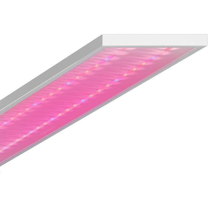 Светодиодный фитосветильник Geniled ЛПО Agro, 120×18×4.5 см, 60 Вт, микропризма, 90°, IP54