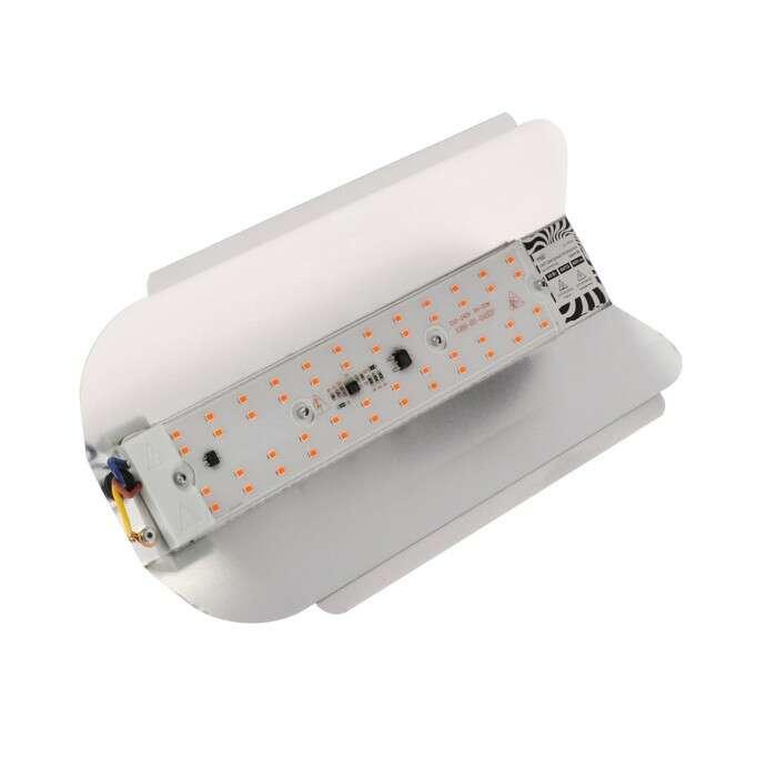 Прожектор светодиодный Luazon СДО09-50 бескорпусный, 50 Вт, ФИТО, 4500 Лм, IP65, 220 В