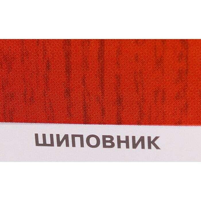 Защитное текстурное покрытие для древесины, шиповник, 3 л