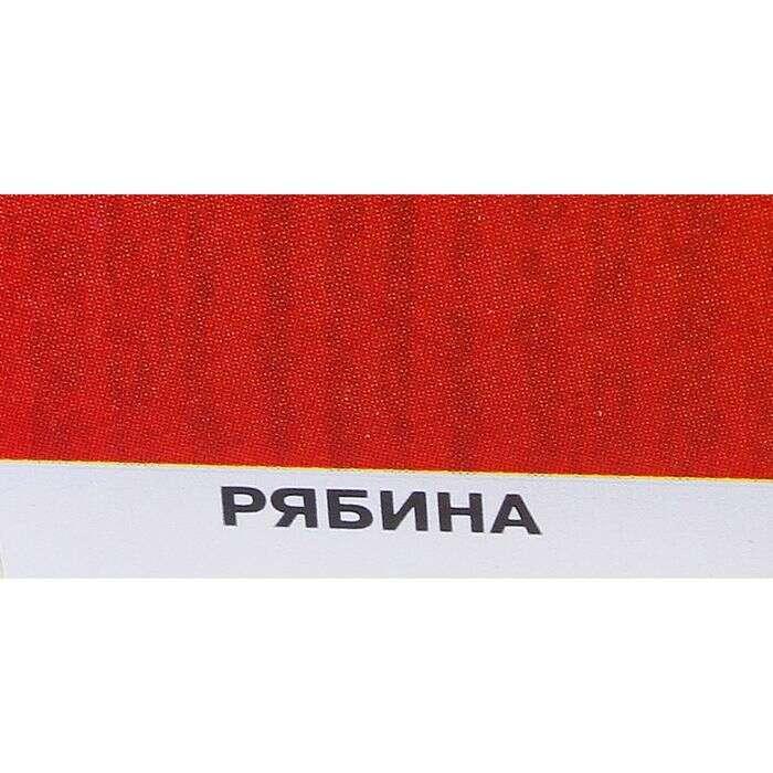 Защитное текстурное покрытие для древесины, рябина, 0,8 л