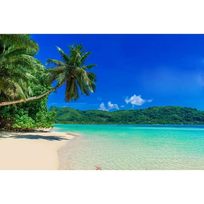 Фотобаннер, 250 × 200 см, с фотопечатью, «Пляж»