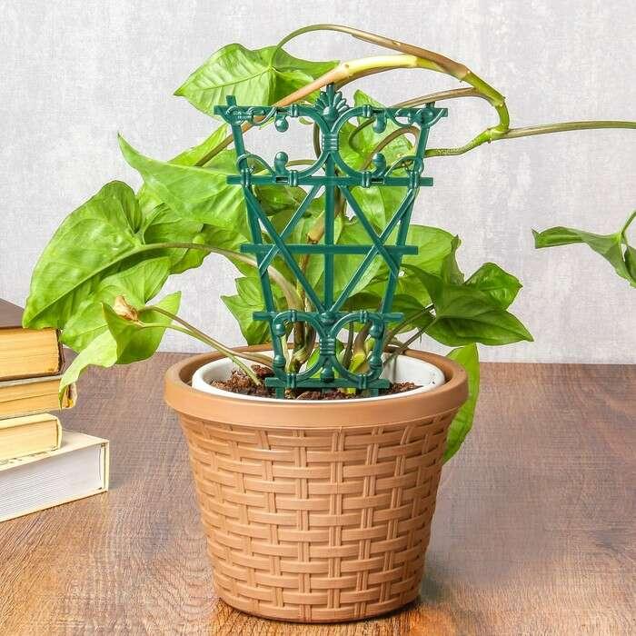 Шпалера, 25 × 15 × 1 см, пластик, зелёная