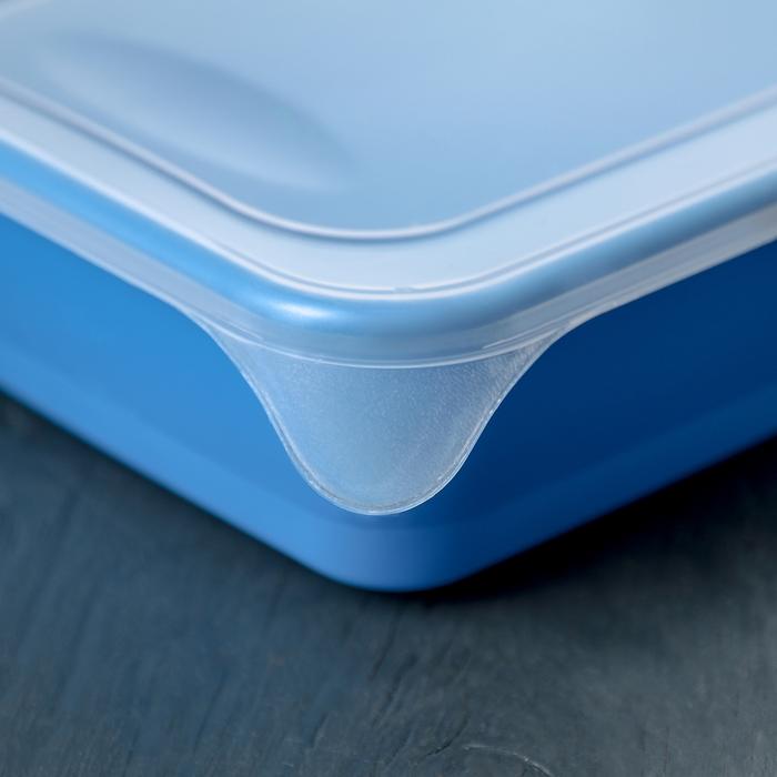 Контейнер пищевой для СВЧ, прямоугольный 0,9 л, цвет МИКС