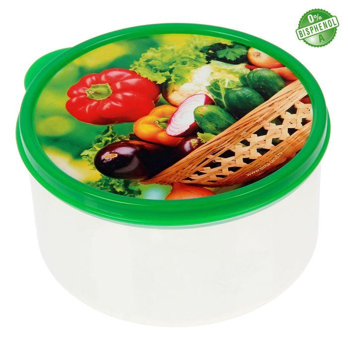 "Ланч-бокс ""Овощи и зелень"", 500 мл"