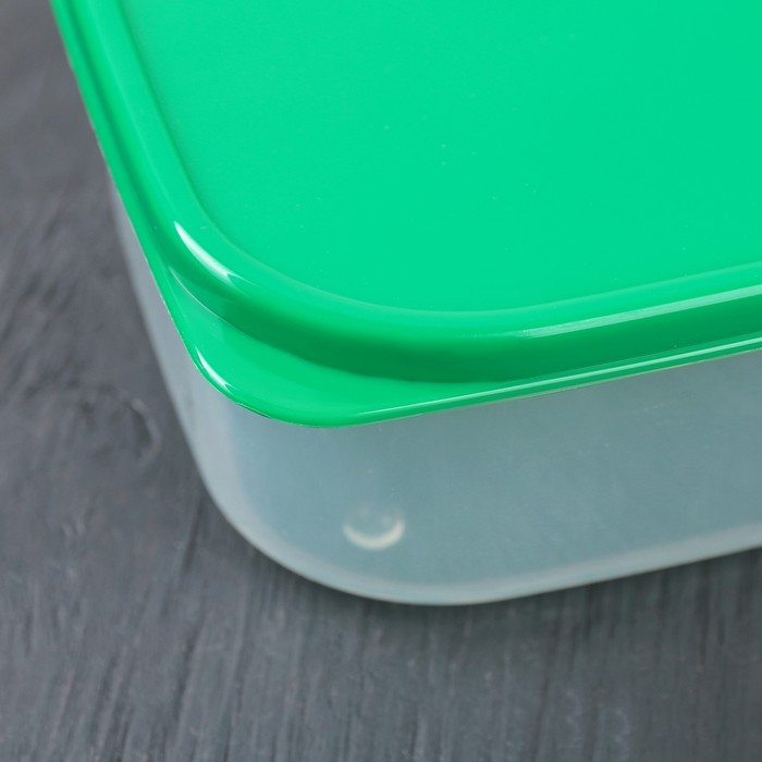 Набор пищевых контейнеров, 2 шт: 450 мл, 700 мл, цвет зелёный
