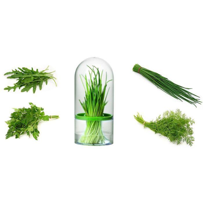 Ёмкость Tescoma SENSE для хранения трав