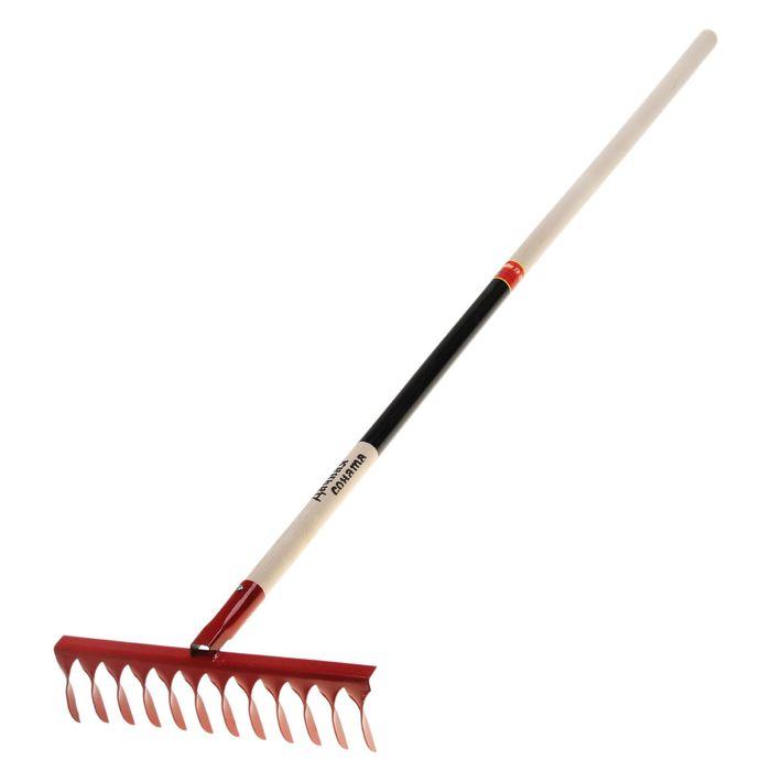 Грабли прямые, повёрнутый зуб, 12 зубцов, металлические, деревянный черенок