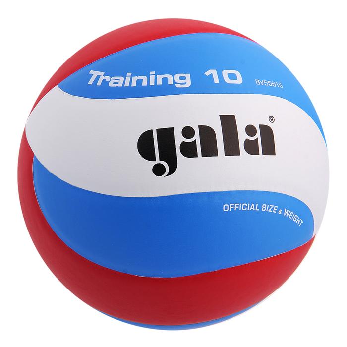 Мяч волейбольный Gala Training 10, BV5561S, размер 5, PU, клееный