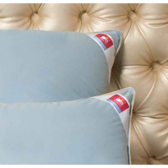 Подушка «Камелия», размер 38 × 60 см, тик, голубой/шампань