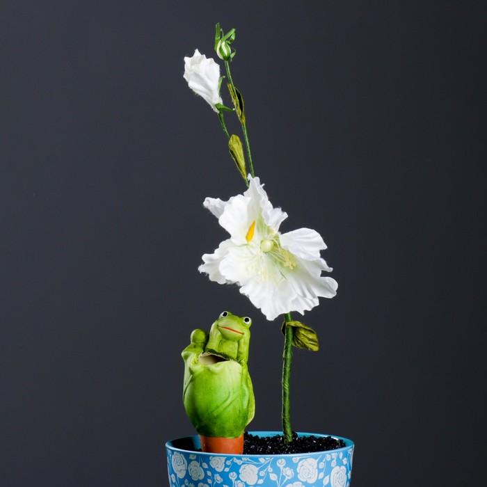 """Ороситель для домашних растений """"Лягушка на капусте"""", микс 4 вида"""