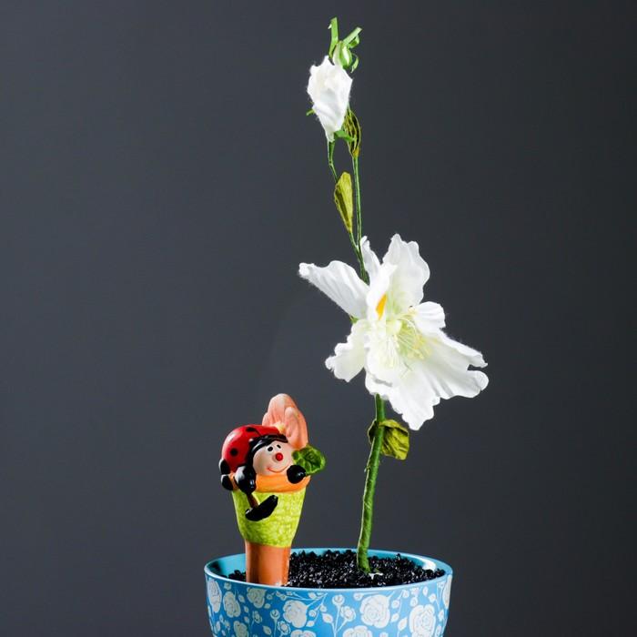 """Ороситель для домашних растений """"Божья коровка"""" микс 4 вида"""