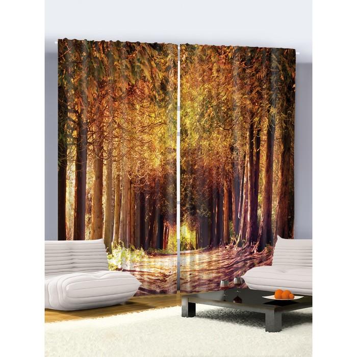 Комплект фотоштор Joy Arty «Спокойствие на тропинке леса», 145х265 см - 2 шт, п/э 100%