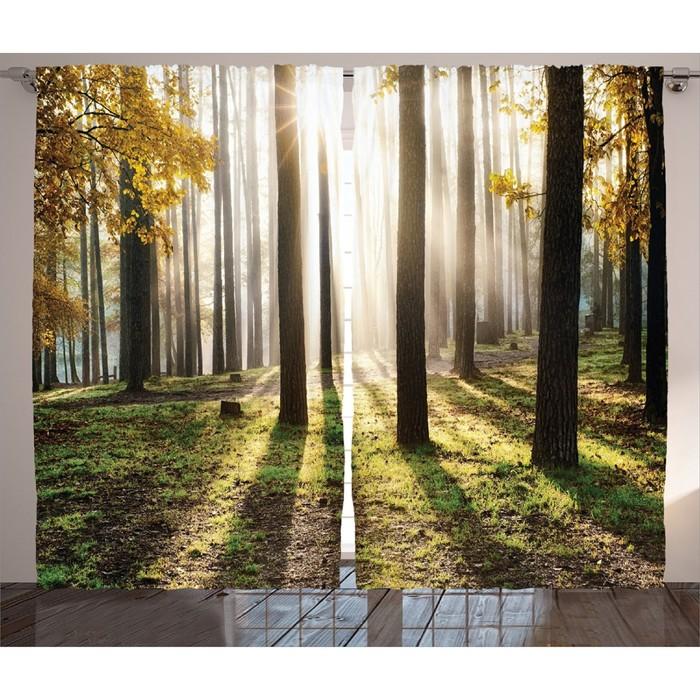 """Комплект фотоштор JoyArty """"Солнце в осеннем лесу"""", 145 х 265 см - 2 шт, 100% полиэстер"""