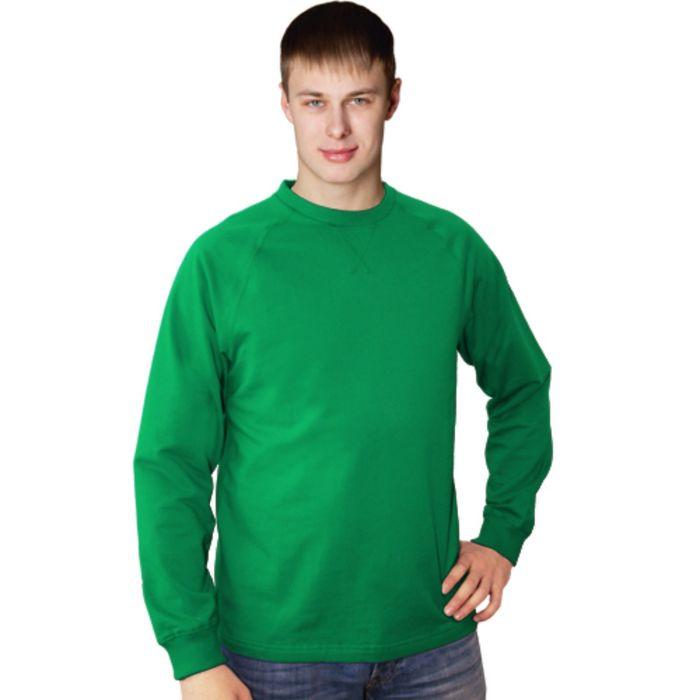 Толстовка мужская StanWork, размер 46, цвет зелёный 220 г/м