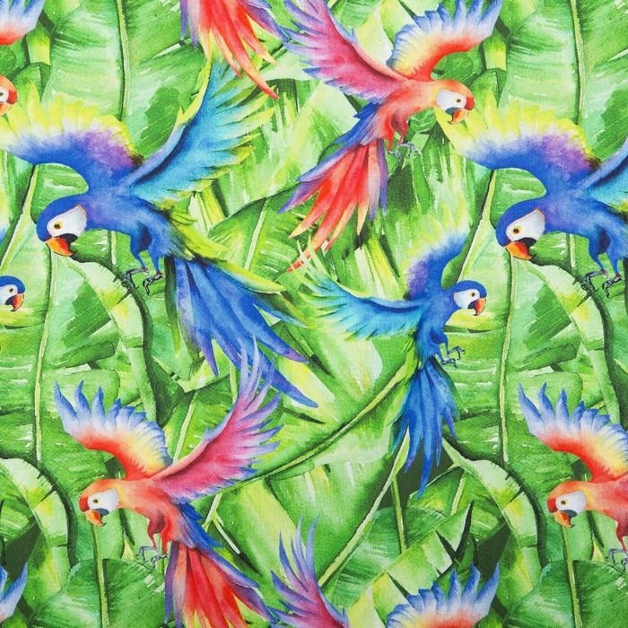 Матрас на шезлонг «Этель» Попугай, 55×190+2 см, репс с пропиткой ВМГО, 100% хлопок