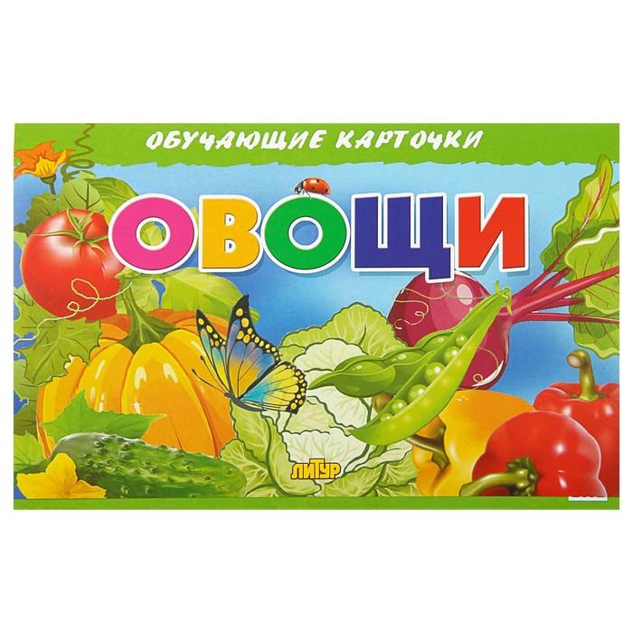 Обучающие карточки «Овощи» (европодвес)