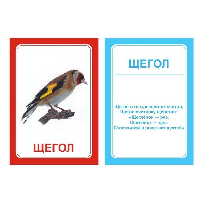 Логопедические карточки «Логопедка «Щ + Х»