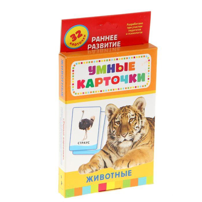Умные карточки «Животные», 32 карточки