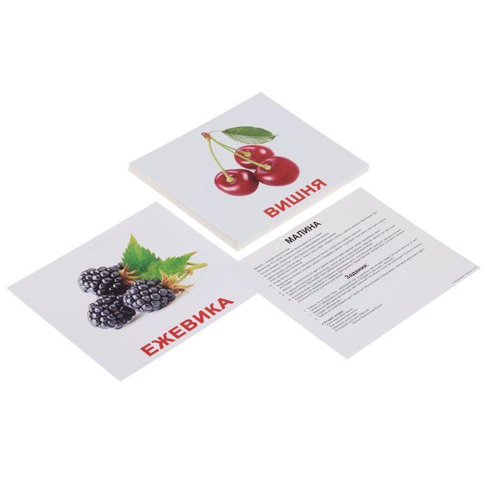 Обучающие карточки «Ягоды»