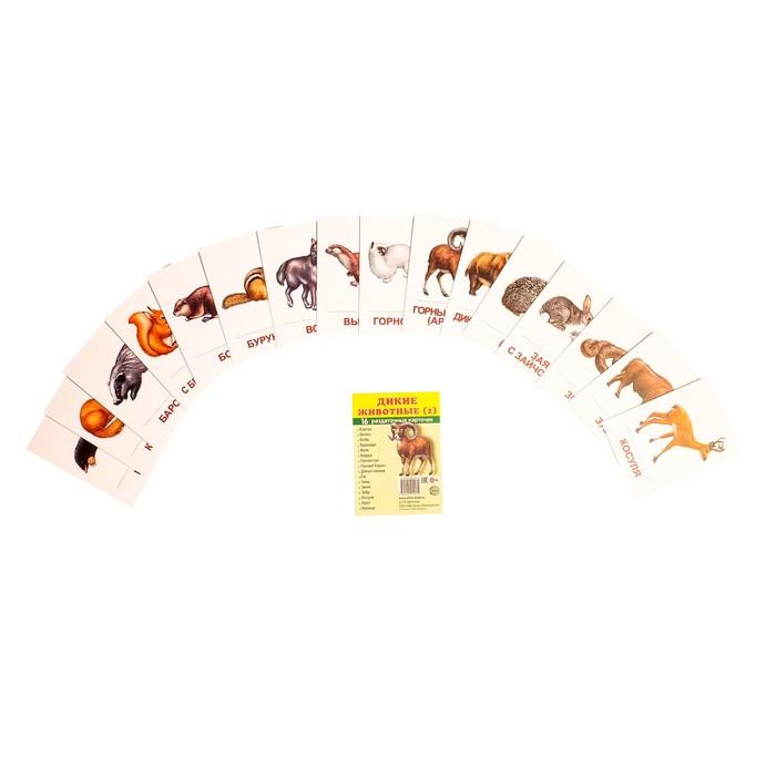 """Карточки обучающие """"Дикие животные-1"""" 16 шт. 6,3 х 8,7 см."""