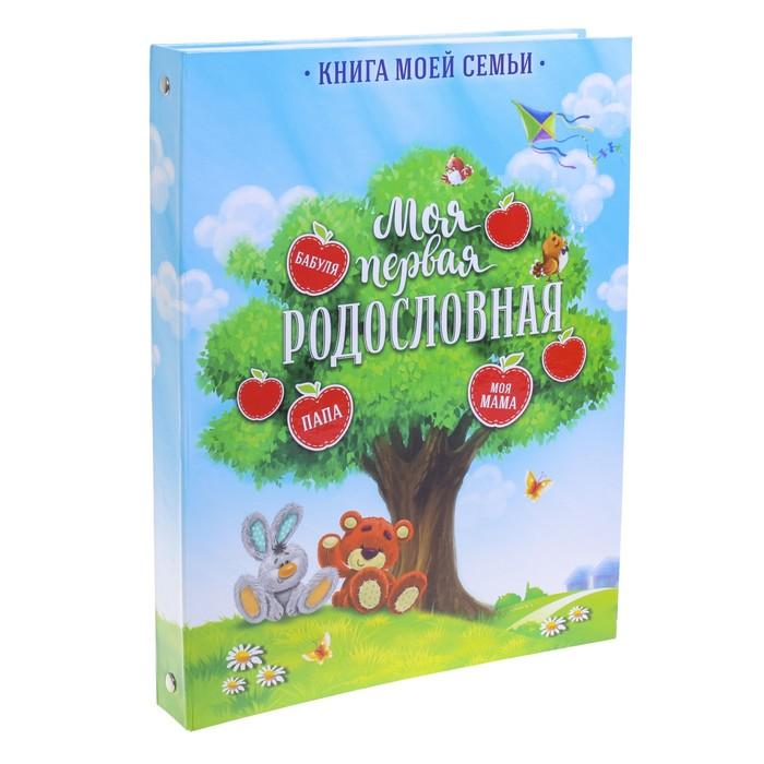 """Детская родословная папка """"Яблоки"""""""