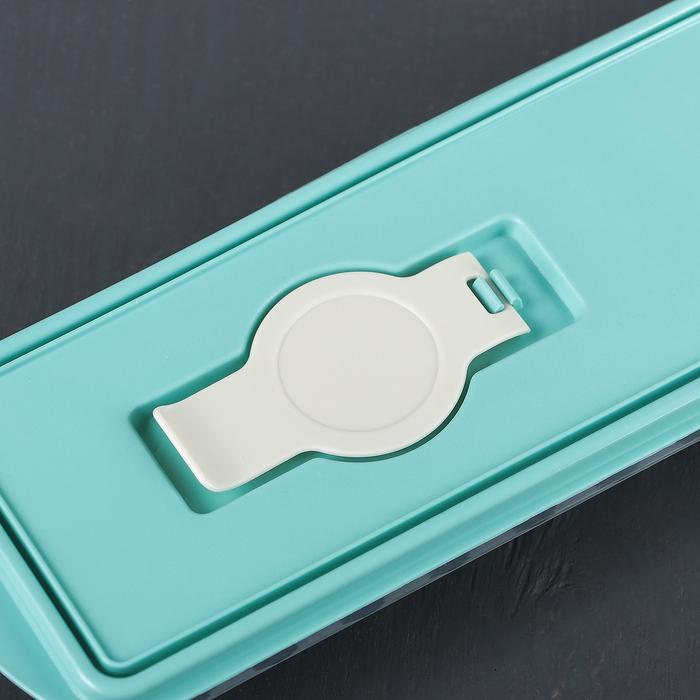"""Форма для льда """"Палочки"""", с крышкой и клапаном, цвет аквамарин"""