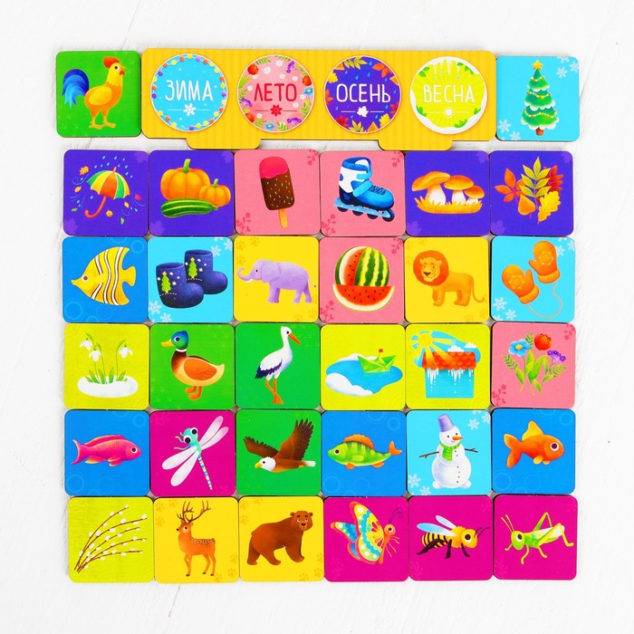 Развивающая игра «Сортер: Окружающий мир» 32 фишки