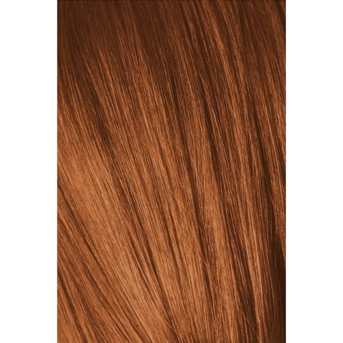 Краситель для волос Igora Absolutes 6-70 Темный русый, Медный натуральный, 60 мл