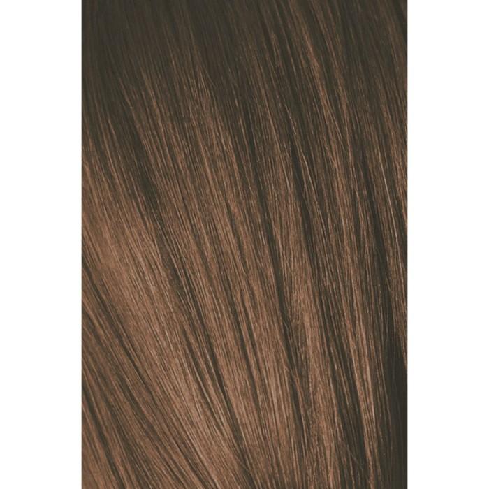 Крем-краска для волос Igora Royal 6-65 Темный русый шоколадный золотистый, 60 мл