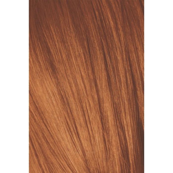 Крем-краска для волос Igora Royal 8-77 Светлый русый медный экстра, 60 мл