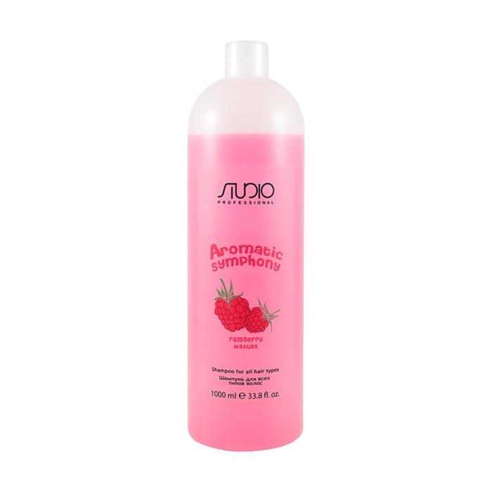 Шампунь для всех типов волос «Малина» Studio Professional, 1000 мл