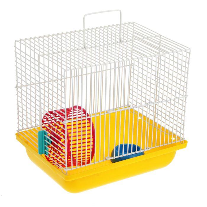 Клетка для джунгариков Зооник, 22,5 х 16,5 х 21 см