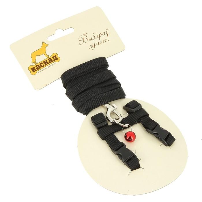Комплект амуниции для грызунов, 1 см, шлейка 20-30 см, поводок 120 см, нейлон, чёрный