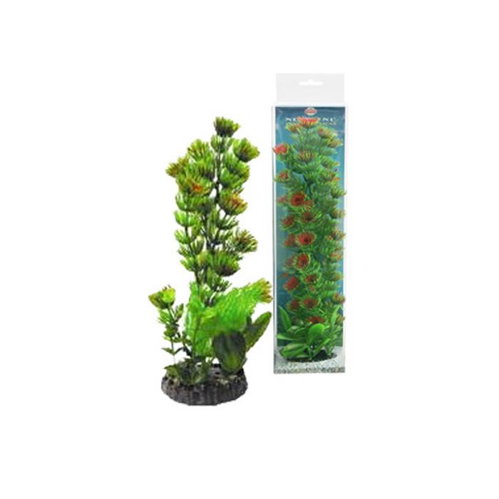 """Растение """"Композиция"""" №  5, 20см"""