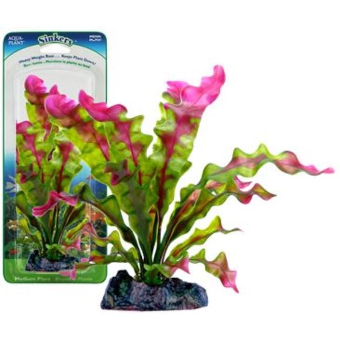 Растение PENN-PLAX FLOWERING CRYPT, 25см, с грузом, красно-зеленое