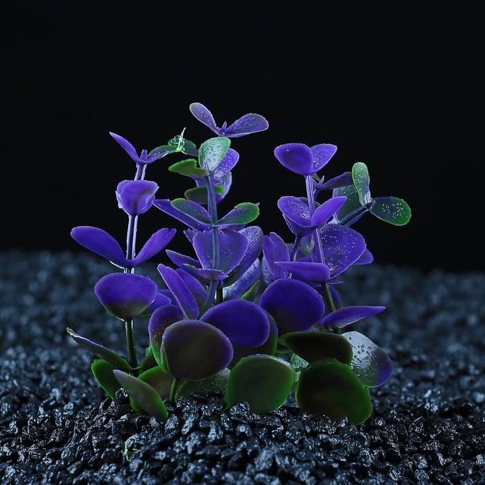Растение искусственное аквариумное кустовое, 10 см, микс цветов