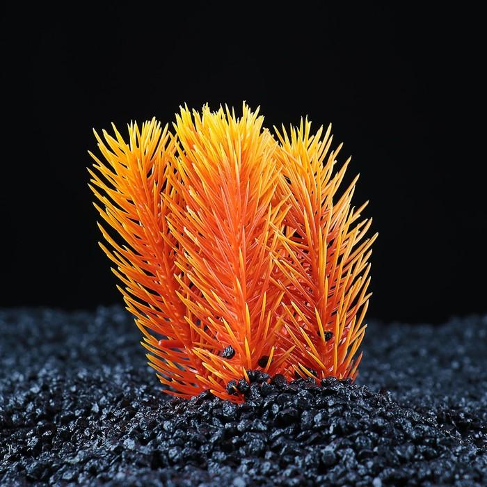 Растение искусственное аквариумное, 9 х 7 х 11 см, микс цветов
