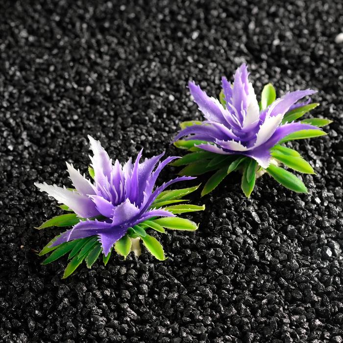 Растение искусственное аквариумное, 11х9х6 см, (набор 2 шт) микс цветов