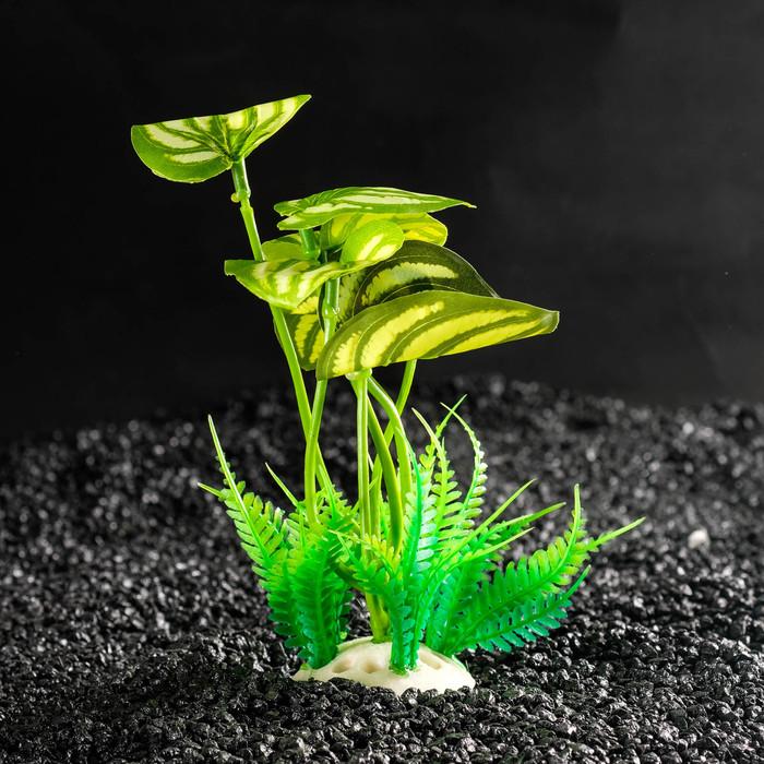 Растение искусственное аквариумное, 10,5 х 10,5 х 14 см