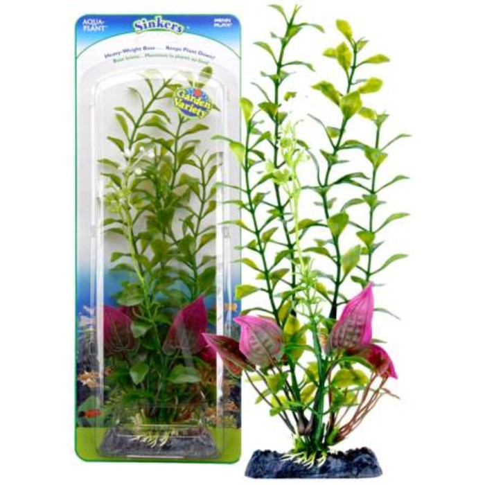 Растение-композиция PENN-PLAX BLOOMING LUDWIGIA-MALAY CRIP, 25см