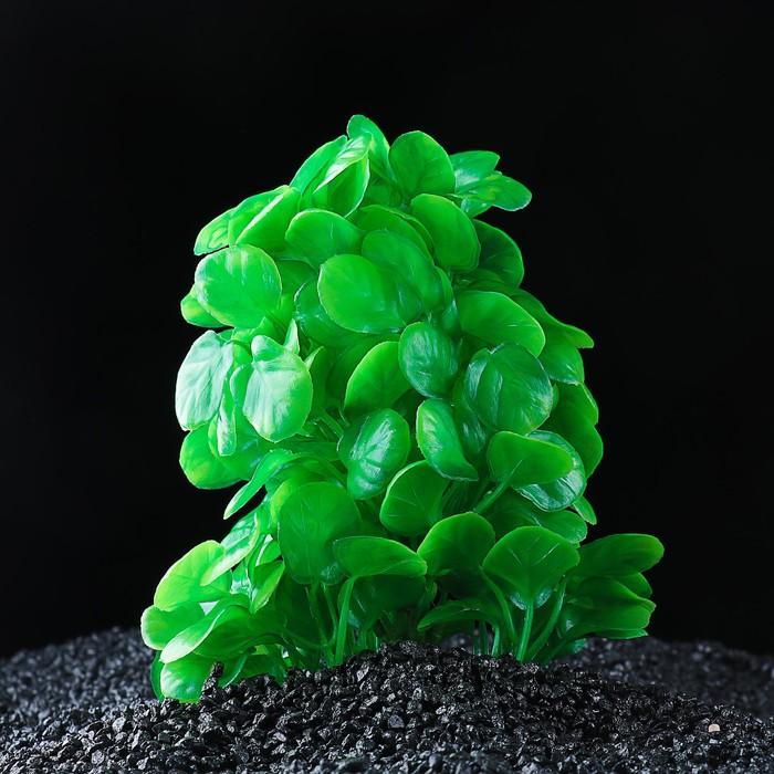 Растение искусственное аквариумное 15 х 12 х 18 см