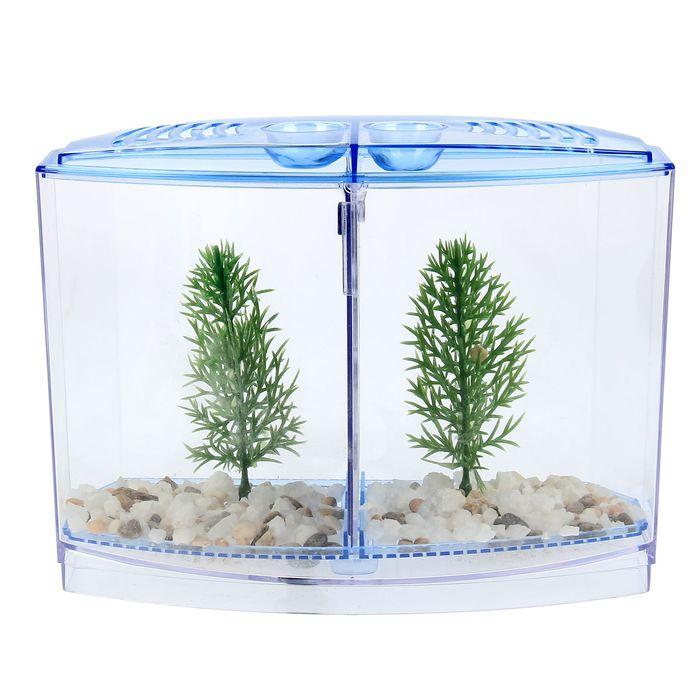 Аквариумный набор: отсадник двухсекционный с грунтом и 2 растениеями