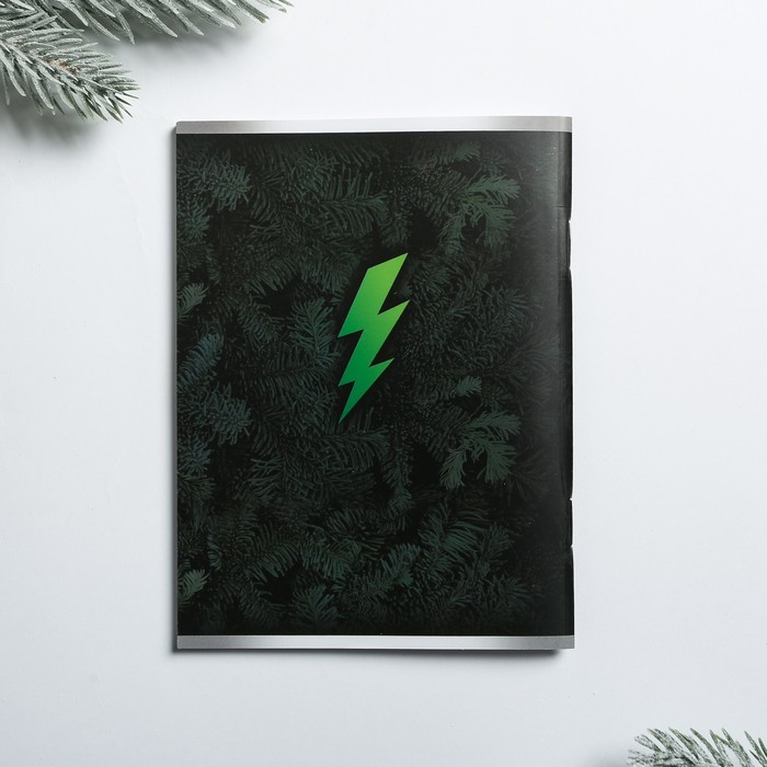Подарочный набор «Новогодний заряд»: фляга 210 мл, блокнот