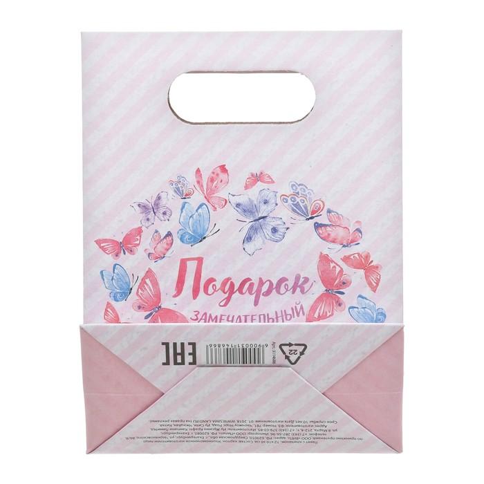 Пакет подарочный «Подарок замечательный», 12 × 16 × 6 см,