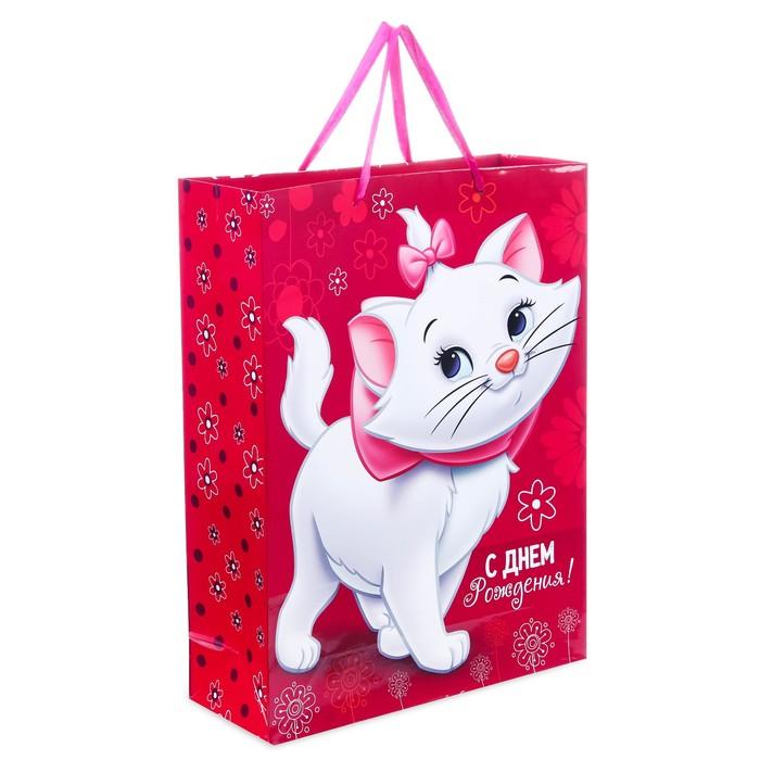 """Пакет ламинированный вертикальный """"С Днем рождения, чудесная девочка!"""", Коты аристократы, 12 х 15 х 5.5 см"""