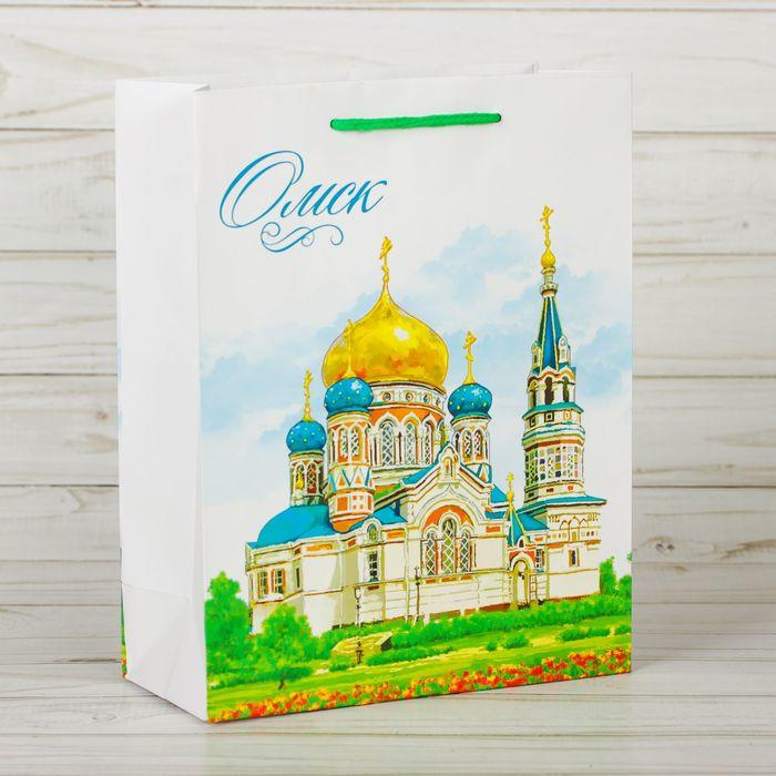 Пакет подарочный МС «Омск»