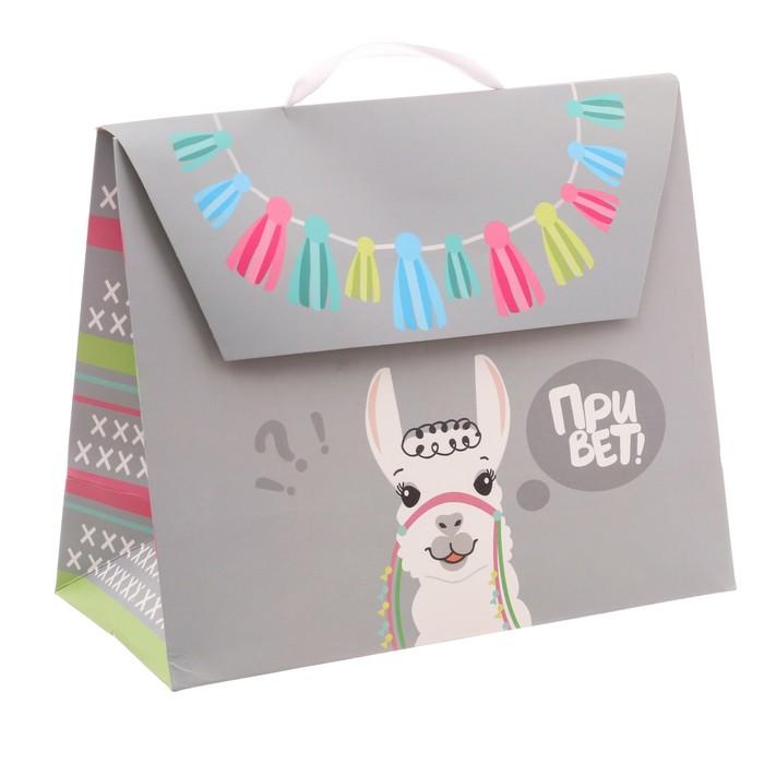Пакет подарочный «Привет!», 23,5 × 19,5 × 11 см