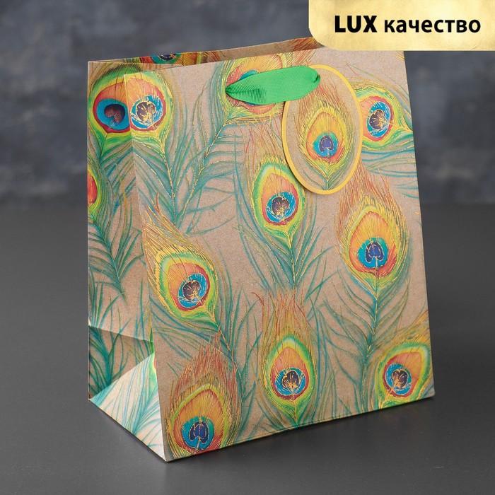 "Пакет подарочный ""Перья павлина"", премиум, 20 х 24 х 10,2 см"