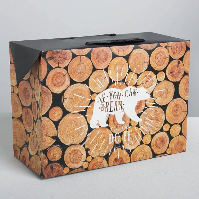 Пакет—коробка Do it, 28 х 20 х13 см