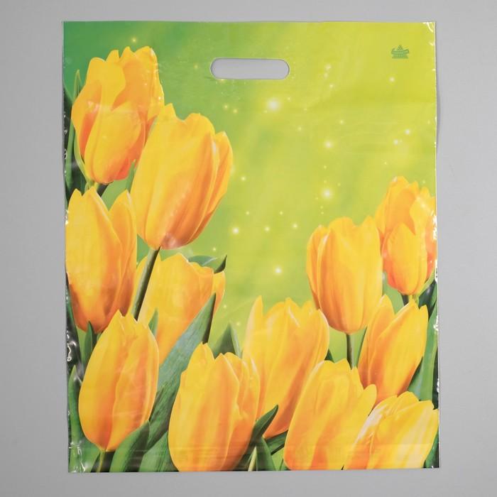 """Пакет """"Солнечные тюльпаны"""", полиэтиленовый с вырубной ручкой, 38 х 45 см, 60 мкм"""